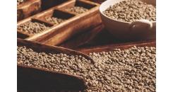 """Что такое «спешелти кофе» и какой кофе можно назвать """"Speciality"""" в 2021 году?"""