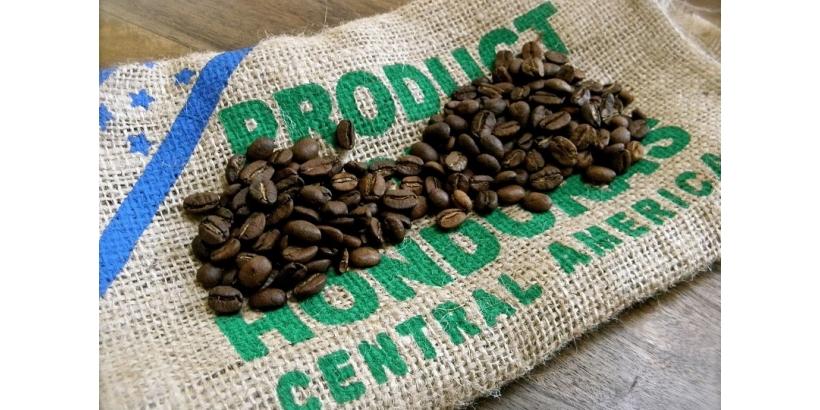 Гондурас и его место в мире кофе