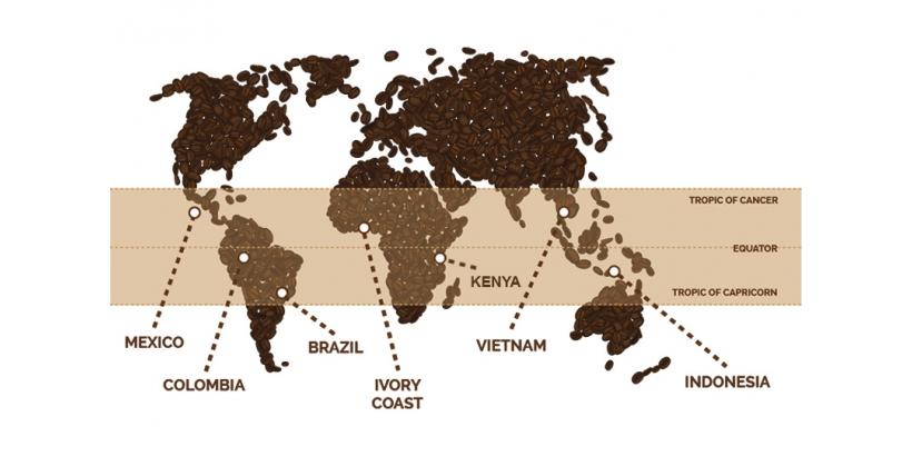 Оттенки вкуса кофе из разных уголков мира